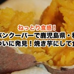 別名蜜いも!カナダ・バンクーバーで種子島産の安納芋(さつまいも)を発見。焼き芋レシピ