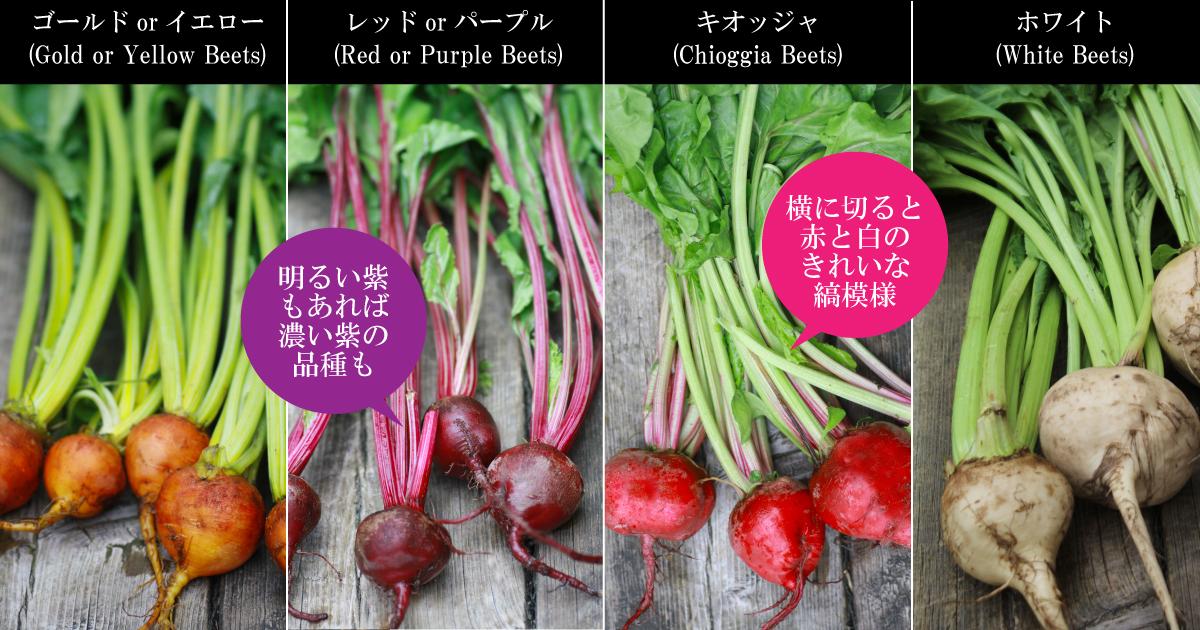beet-varieties