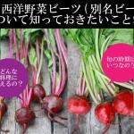 【保存版】西洋野菜ビーツ(別名ビートルート)について知っておきたいこと9つ