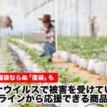 新型コロナウイルスで被害を受けている農家をオンラインから応援できる商品6