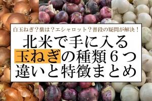 onion-matome