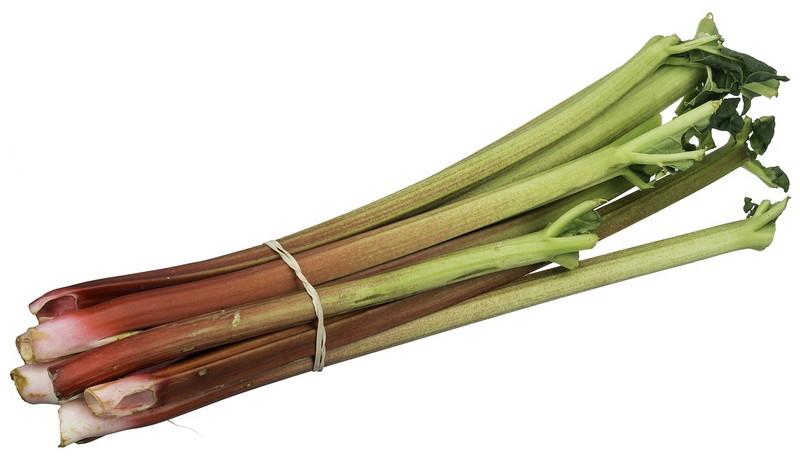 rhubarb-2202501_1280