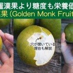 GOLDEN-MONK-FRUIT