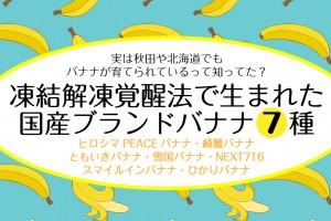 japanese-brand-banana7