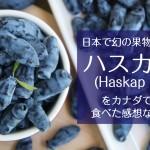 幻の果物ハスカップ(Haskap Berry)をカナダBC州バンクーバーで入手!食べてみた感想まとめ