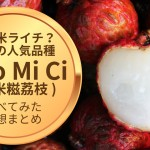 もち米ライチ?中国の品種 Nuo Mi Ci(糯米糍荔枝)まとめ。食べてみた感想も