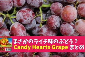 Candy-Hearts-Grape
