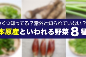 nihon-gensan2