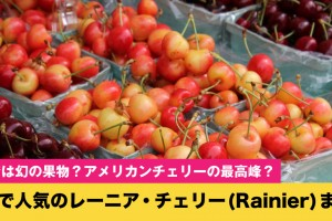 rainiercherry-matome