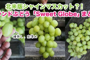 sweet-globe-grape