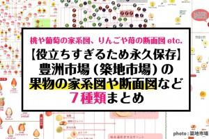 tsukiji-toyosu-map-graph