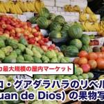 ラテンアメリカ最大規模の屋内マーケット!メキシコ・グアダラハラのリベルタ市場(通称 San Juan de Dios) の果物写真18枚