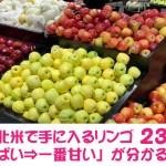 【保存版】北米で手に入るリンゴ23種類の「一番酸っぱい⇒一番甘い」が分かるチャート表