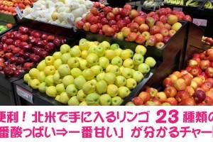 apples23