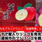 蜜入り!カナダで中国山西省運城市のフジリンゴを発見した話 × ブランド「运城苹果」って何?