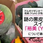 でんすけすいか?北米・謎の黒皮種無しスイカ裕美(Yumi)について調べてみた