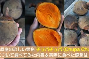 chupa-chupa-fruit